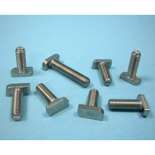 High Quality Stainless Steel and Carbon Steel T Bolt Made in China